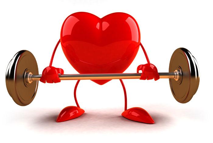 Rezultat iskanja slik za heart weight images